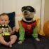 10 Cutest Baby and Toddler Halloween Costumes