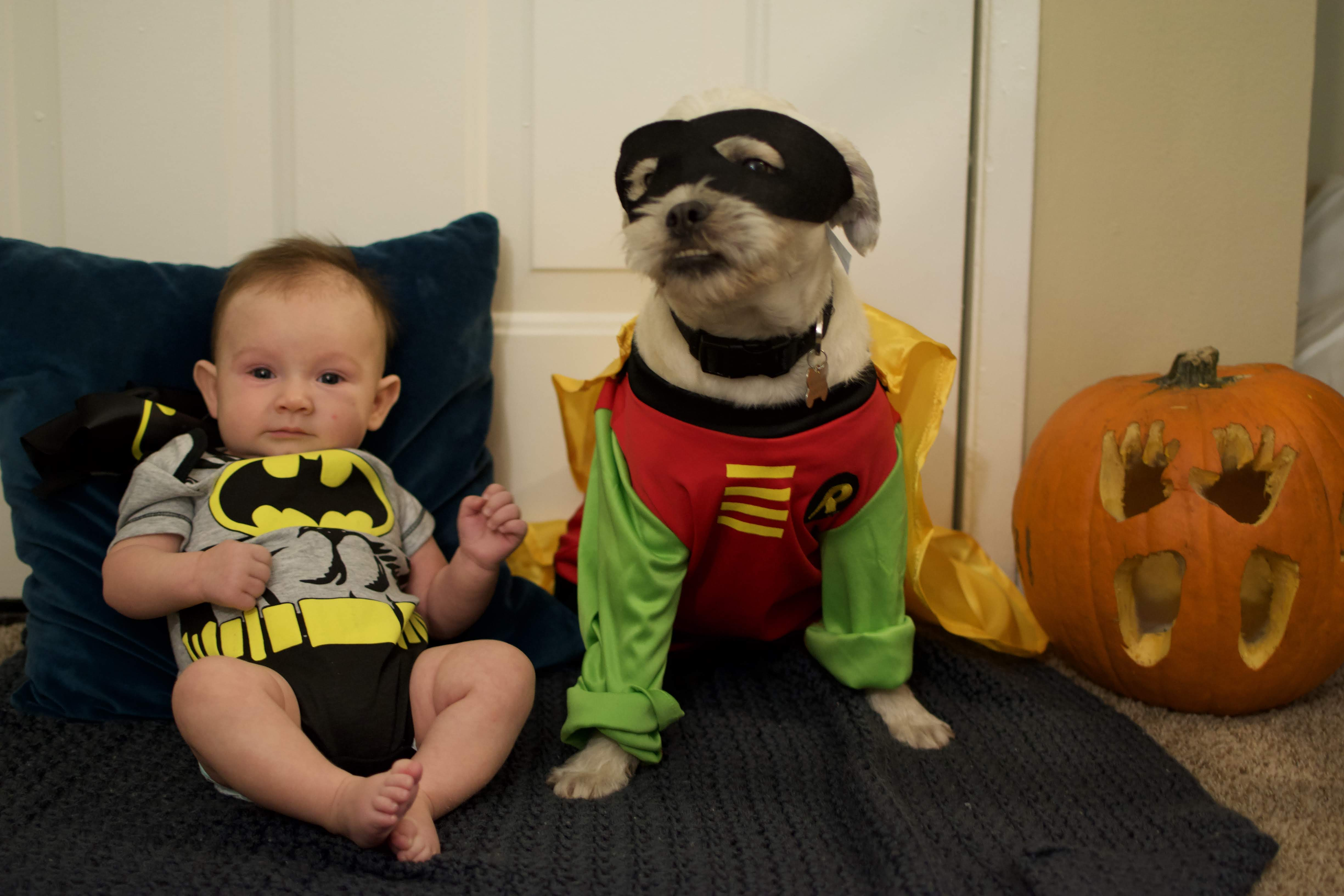 10 cutest baby and toddler halloween costumes |
